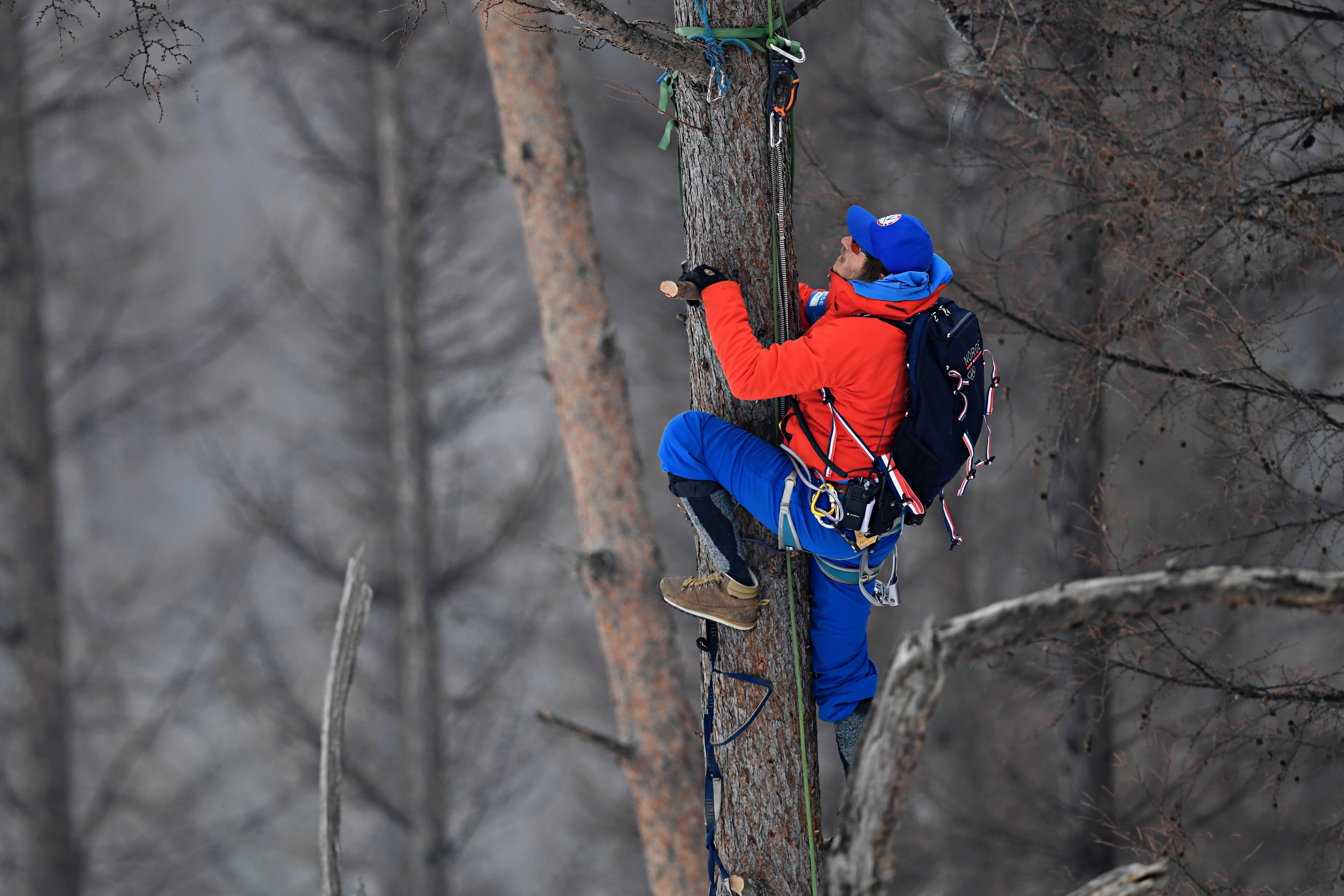 Les entraîneurs montent aux arbres pour analyser au mieux les entraînements de descente.